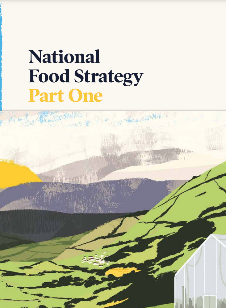 Day 47: Thoughts on the National Food Strategy (TYOH, July 2021)
